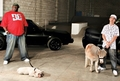 Rob,Big,Meaty,And Mini horse - rob-dyrdek photo