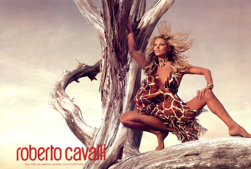 Kate Moss wallpaper called Roberto Cavalli Ad
