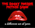 Rocky Horror Picture Show - the-rocky-horror-picture-show wallpaper