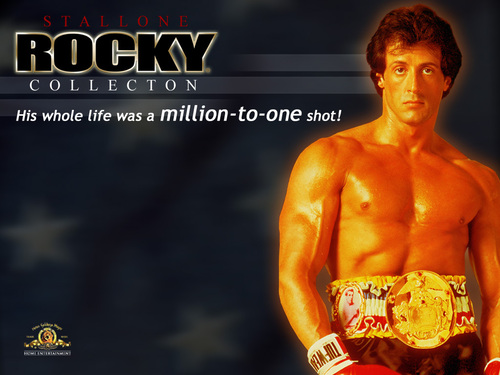 Rocky - rocky Wallpaper