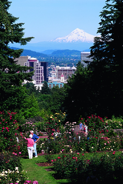 Portland images Rose Garden and Mt Hood wallpaper and
