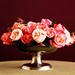 Roses - flowers icon