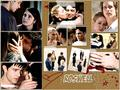 Roswell - Pin Board Wallpaper - roswell wallpaper