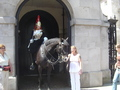 Royal Biting Horse - london photo