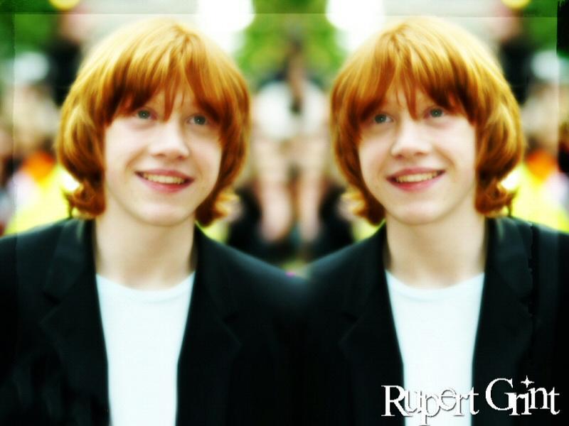 Rupert hình nền