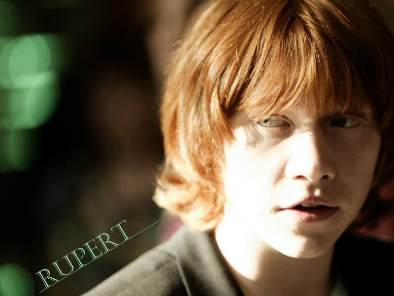 Rupert wallpaper