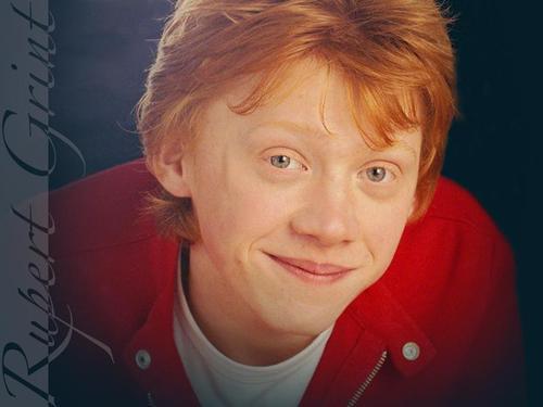 Rupert karatasi la kupamba ukuta