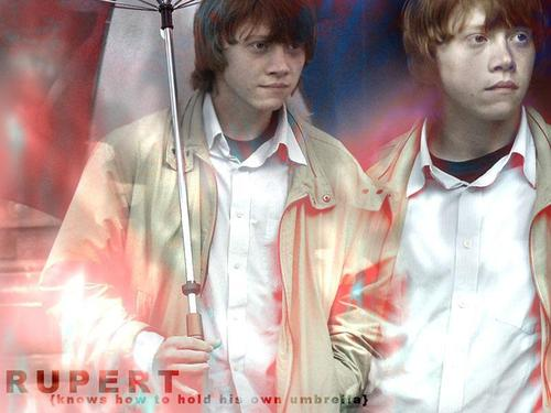 Rupert Grint wallpaper titled Rupert Wallpaper