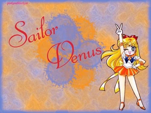 Sailor Moon 9