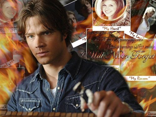 Sam & Jess - sam-winchester Wallpaper