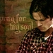 Sammy - sam-winchester icon