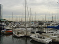 San Diego Harbor - boating photo