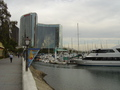San Diego Harbor - san-diego photo