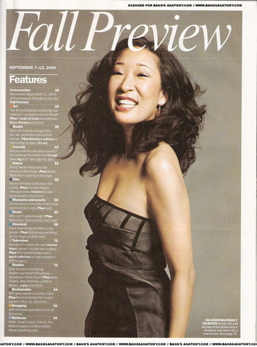 Grey's Anatomy wallpaper entitled Sandra Oh
