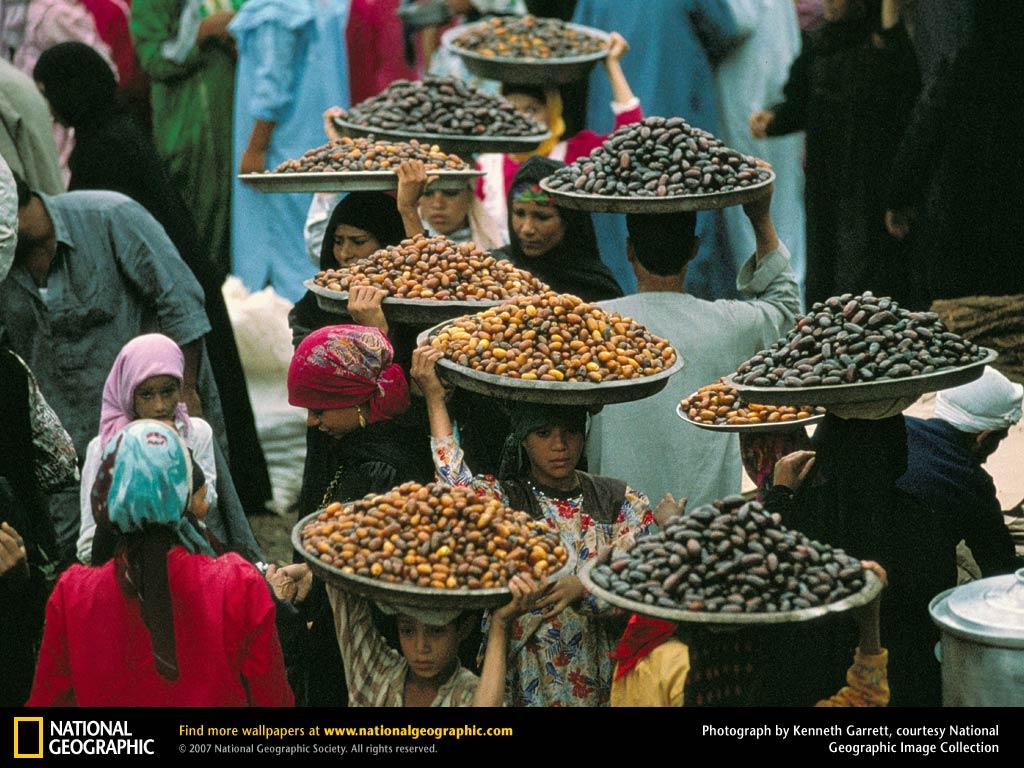 Saqqara Market