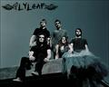 Sass - flyleaf wallpaper
