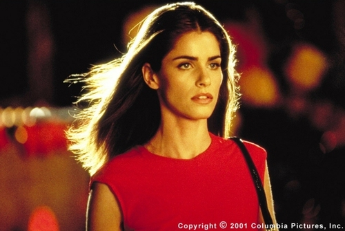 Saving Silverman - amanda-peet Photo