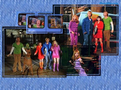 사라 미셸 겔러 바탕화면 entitled Scooby-Doo 2