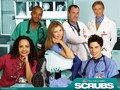 Scrubs Cast - scrubs wallpaper