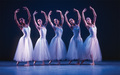 Serenade - Pennsylvania Ballet - ballet photo