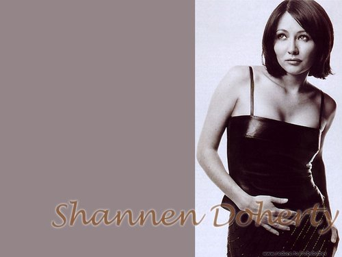 Charmed پیپر وال entitled Shannen Doherty