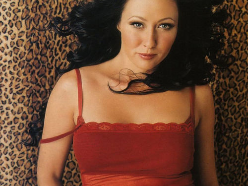 Charmed wallpaper called Shannen Doherty