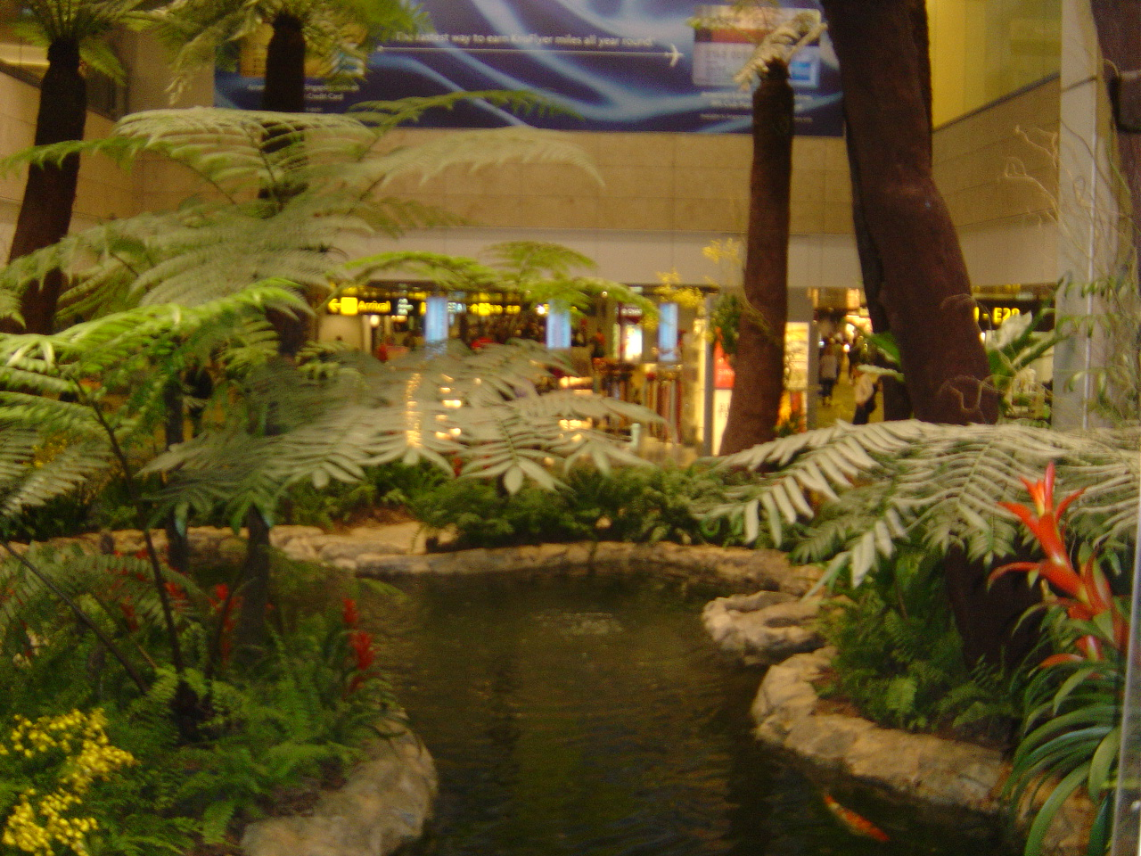 singapore images singapore airport hd wallpaper and background photos  536812