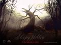 tim-burton - Sleepy Hollow wallpaper