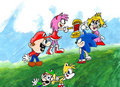 Smash Bros Mario VS Sonic - super-smash-bros-brawl fan art