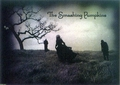 Smashing Pumpkins - smashing-pumpkins photo