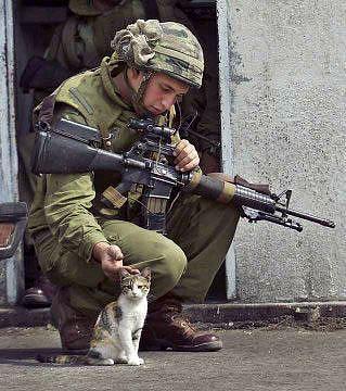Soldier & kitten