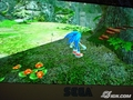 Sonic Game WP Size