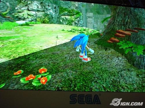 刺猬索尼克 壁纸 titled Sonic Game WP Size