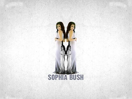 Sophia cespuglio, bush =)