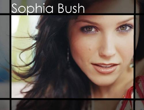 Sophia Bush<333
