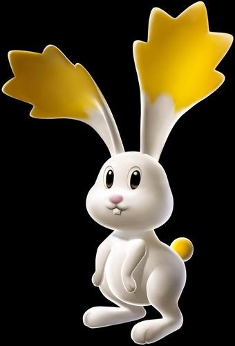 spazio Rabbit