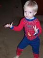 मकड़ी - Boy