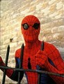 Spider-Man 70's Live Action TV