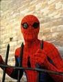 Spider-Man 70's Live Action TV