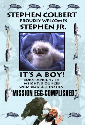 Stephen Jr's Birth Announcemnt - the-colbert-report Fan Art
