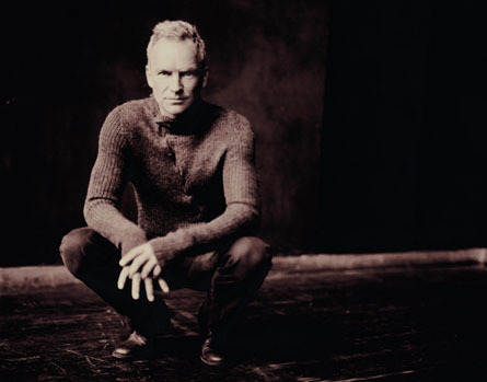 Sting - sting Photo