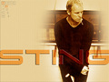 Sting - sting wallpaper