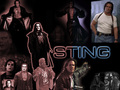 Sting - sting-wcw wallpaper