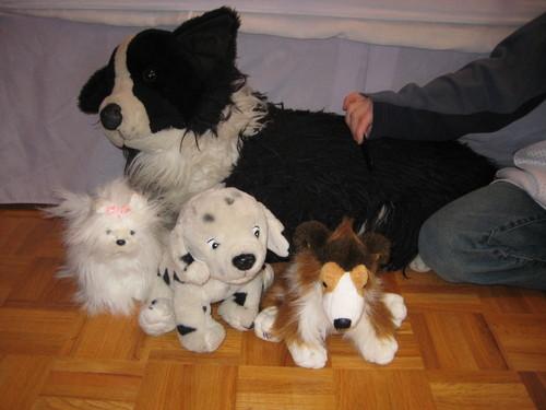 Stuffed Dogs!