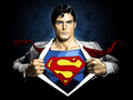 Superman/Clark Kent - superman fan art