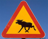 Swedish Moose Sign