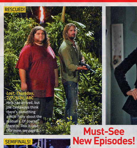 TV Guide Info on 'Rescuers'