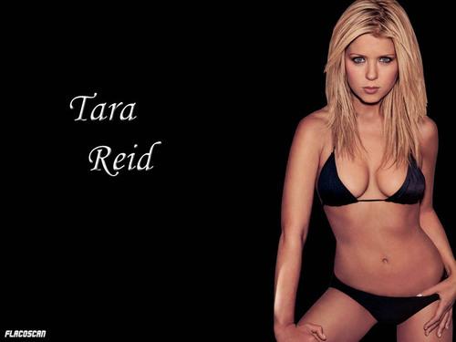 Tara-tara-reid-299622_500_375.jpg