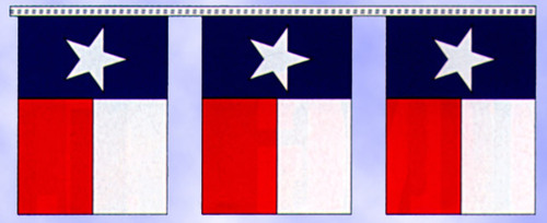 Texas Flag Pennants