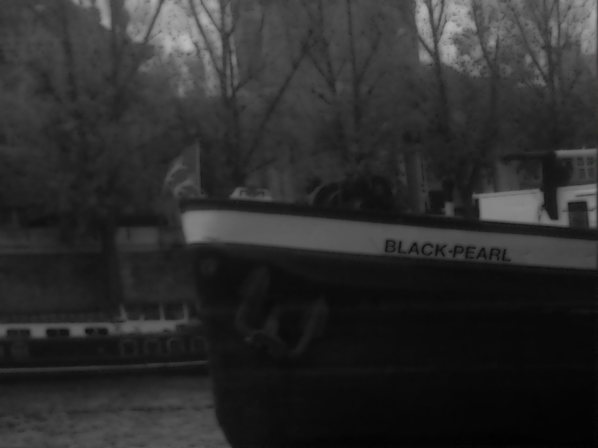 The Black Pearl - Photography Photo (583758) - Fanpop